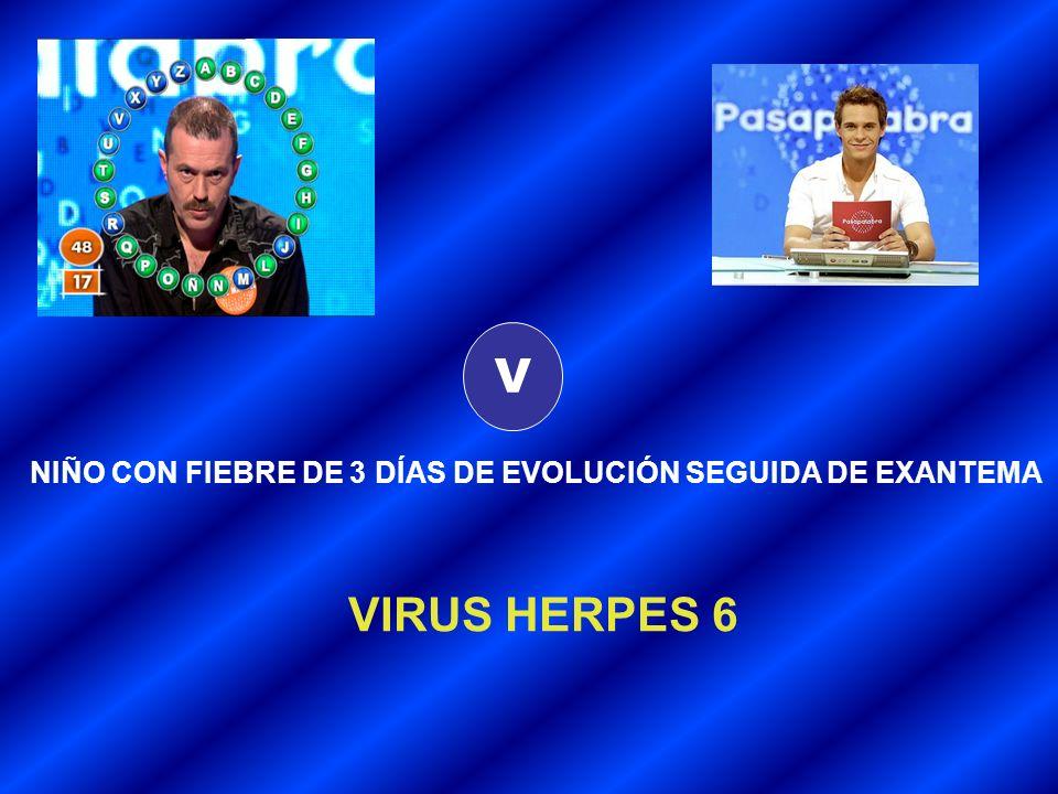 V NIÑO CON FIEBRE DE 3 DÍAS DE EVOLUCIÓN SEGUIDA DE EXANTEMA VIRUS HERPES 6