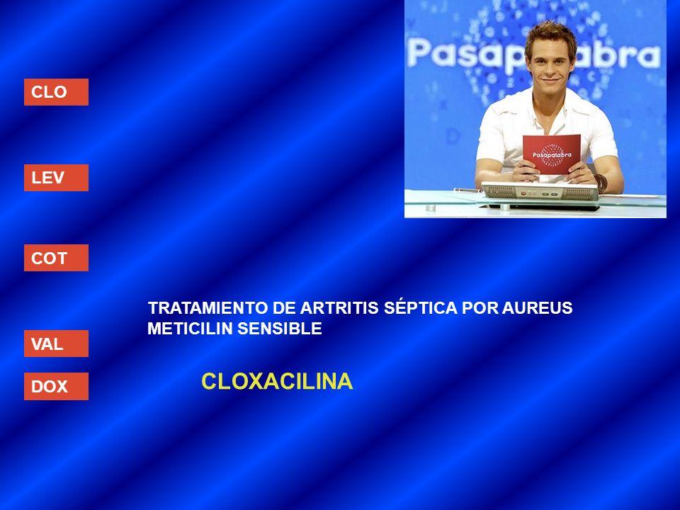 CLOXACILINA CLO LEV COT TRATAMIENTO DE ARTRITIS SÉPTICA POR AUREUS