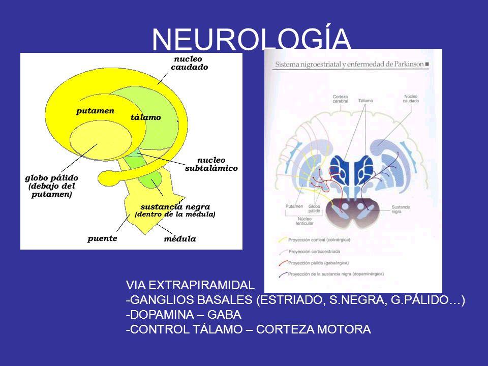 NEUROLOGÍA VIA EXTRAPIRAMIDAL