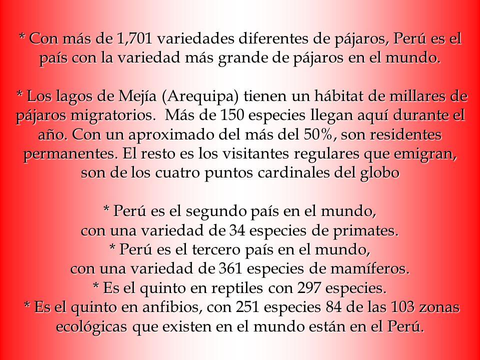 * Con más de 1,701 variedades diferentes de pájaros, Perú es el país con la variedad más grande de pájaros en el mundo.