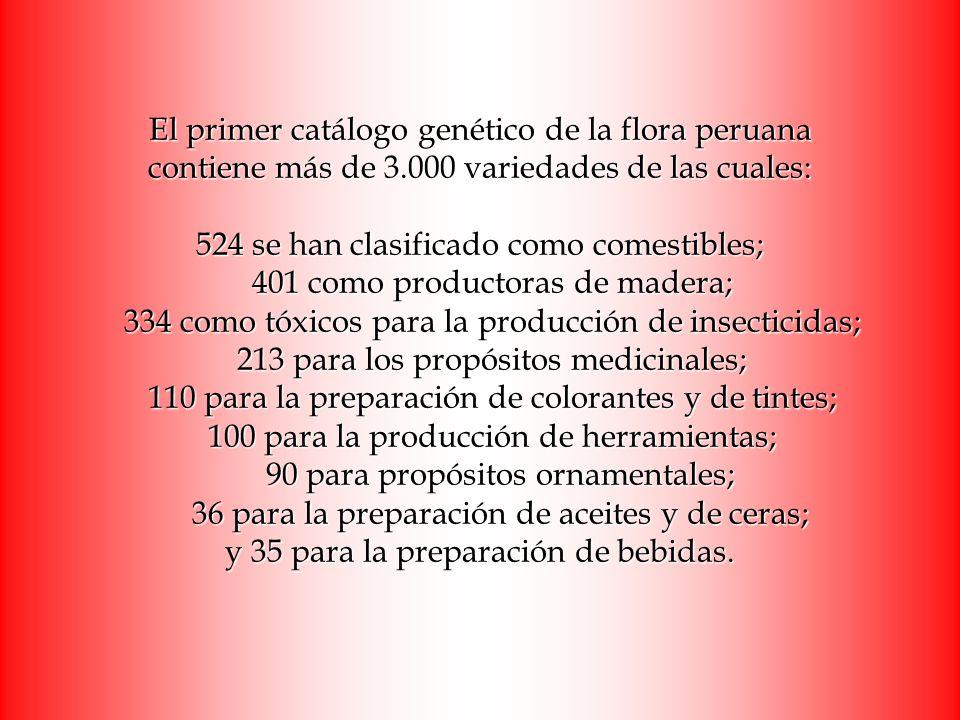 El primer catálogo genético de la flora peruana contiene más de 3