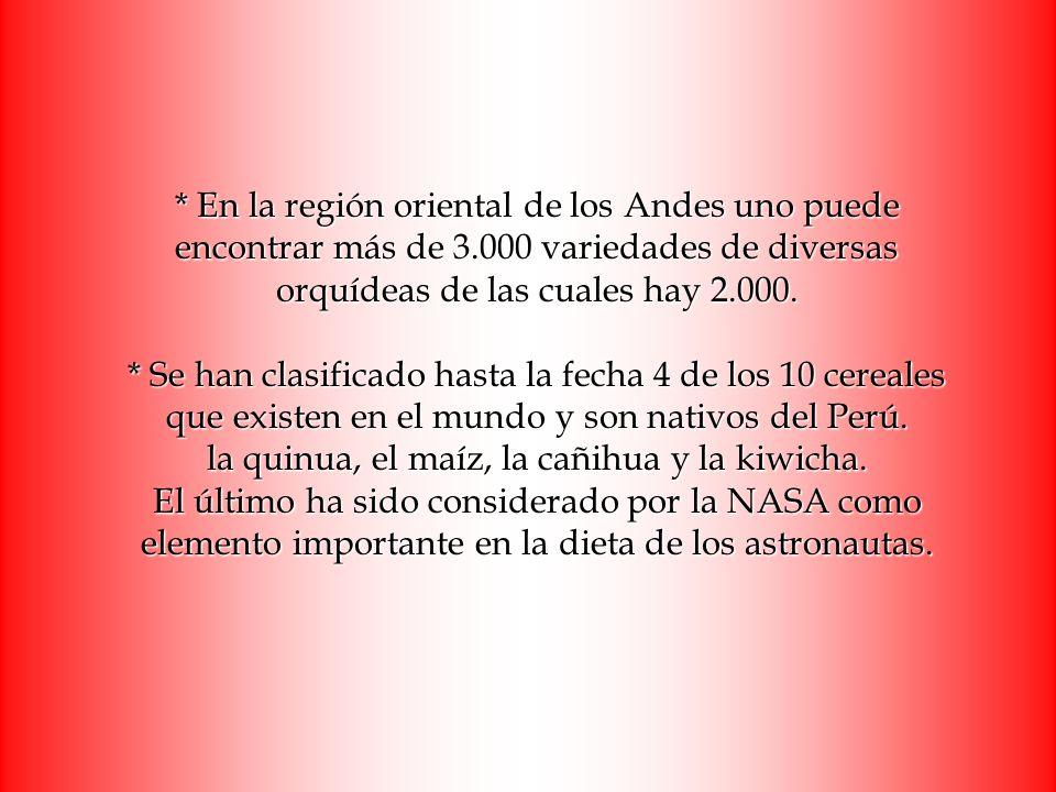 En la región oriental de los Andes uno puede encontrar más de 3