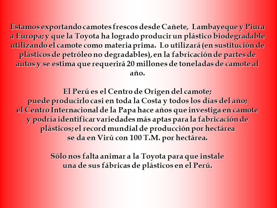 Estamos exportando camotes frescos desde Cañete, Lambayeque y Piura a Europa; y que la Toyota ha logrado producir un plástico biodegradable utilizando el camote como materia prima.