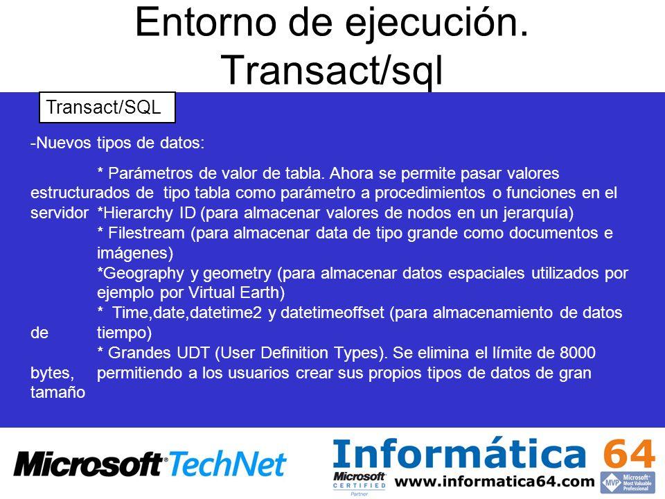 Entorno de ejecución. Transact/sql