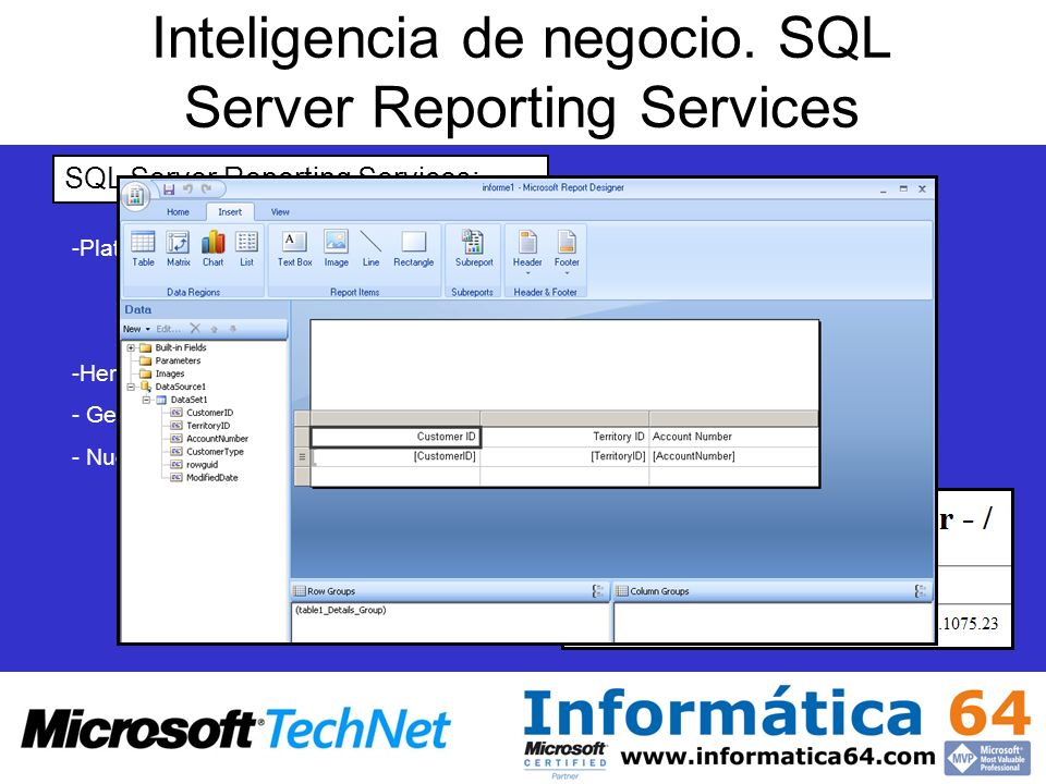 Inteligencia de negocio. SQL Server Reporting Services