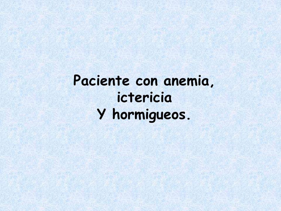Paciente con anemia, ictericia