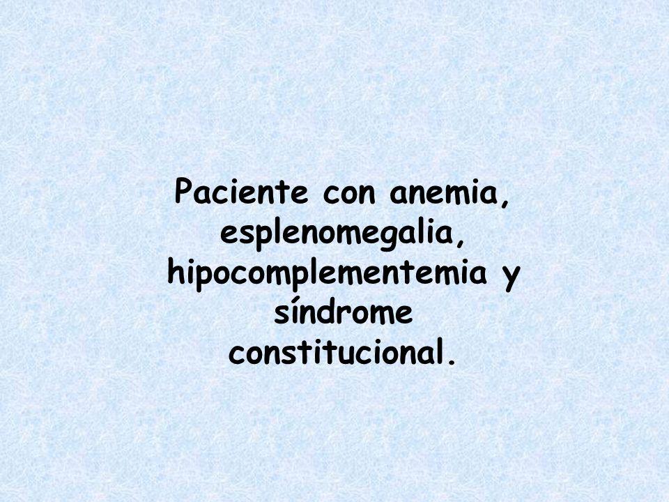 Paciente con anemia, esplenomegalia, hipocomplementemia y síndrome constitucional.