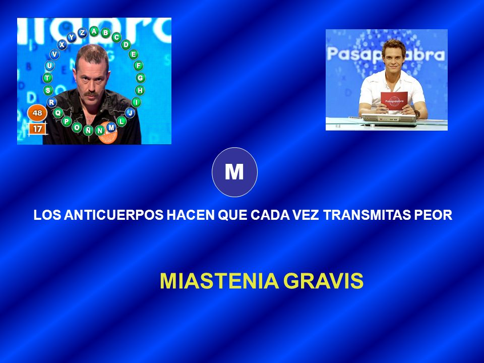 M LOS ANTICUERPOS HACEN QUE CADA VEZ TRANSMITAS PEOR MIASTENIA GRAVIS
