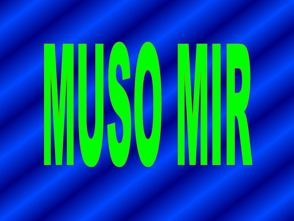 MUSO MIR