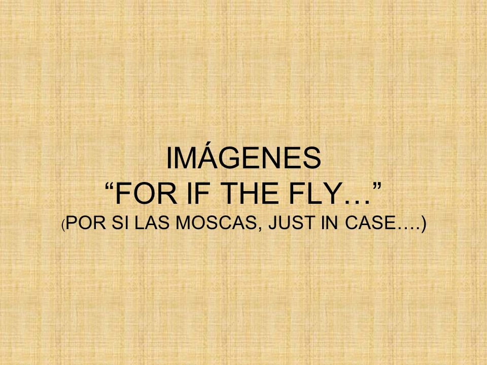 IMÁGENES FOR IF THE FLY… (POR SI LAS MOSCAS, JUST IN CASE….)