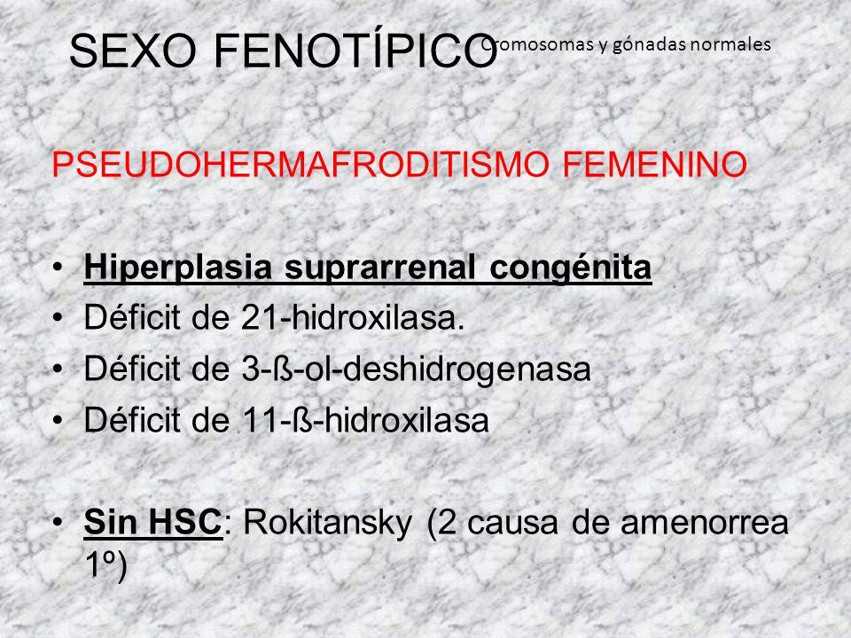 SEXO FENOTÍPICO PSEUDOHERMAFRODITISMO FEMENINO