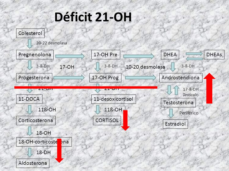 Déficit 21-OH Colesterol Pregnenolona 17-OH Pre DHEA DHEAs 17-OH