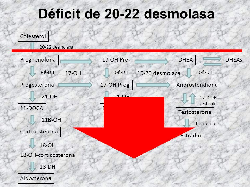 Déficit de 20-22 desmolasa Colesterol Pregnenolona 17-OH Pre DHEA