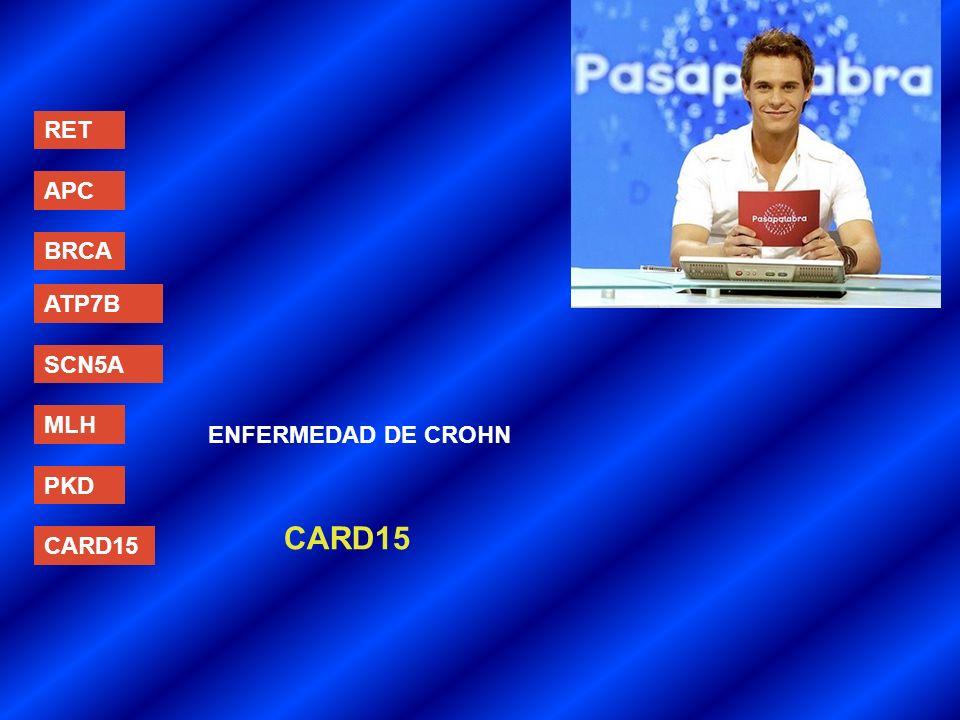 RET APC BRCA ATP7B SCN5A MLH ENFERMEDAD DE CROHN PKD CARD15 CARD15