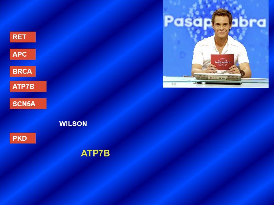 RET APC BRCA ATP7B SCN5A WILSON PKD ATP7B