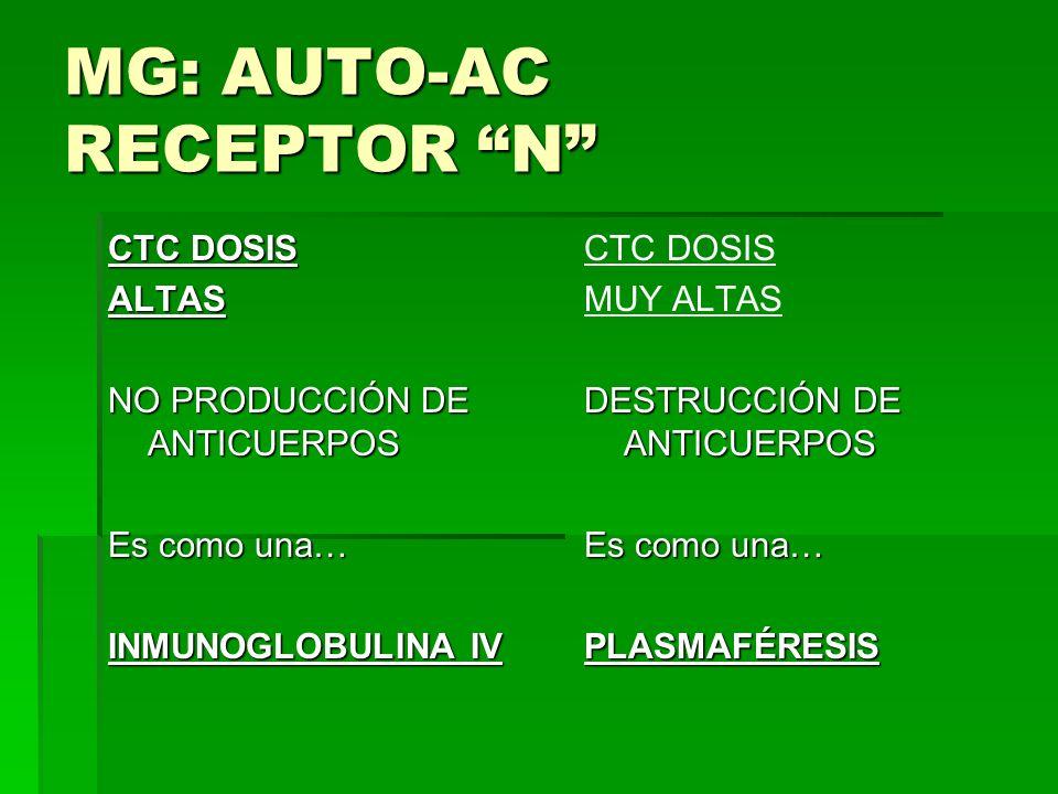 MG: AUTO-AC RECEPTOR N
