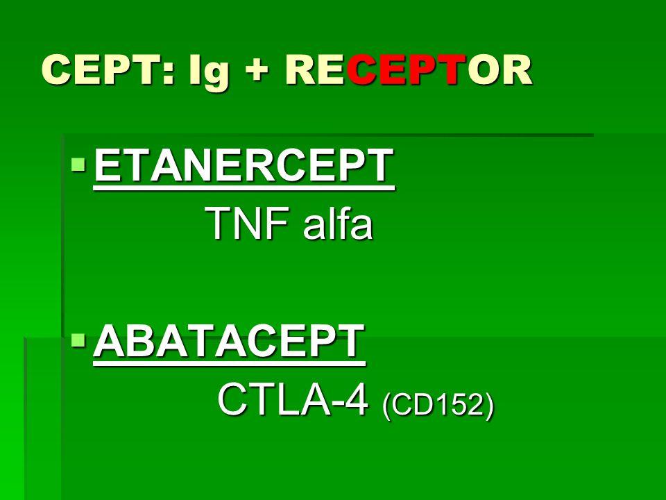 CEPT: Ig + RECEPTOR ETANERCEPT TNF alfa ABATACEPT CTLA-4 (CD152)