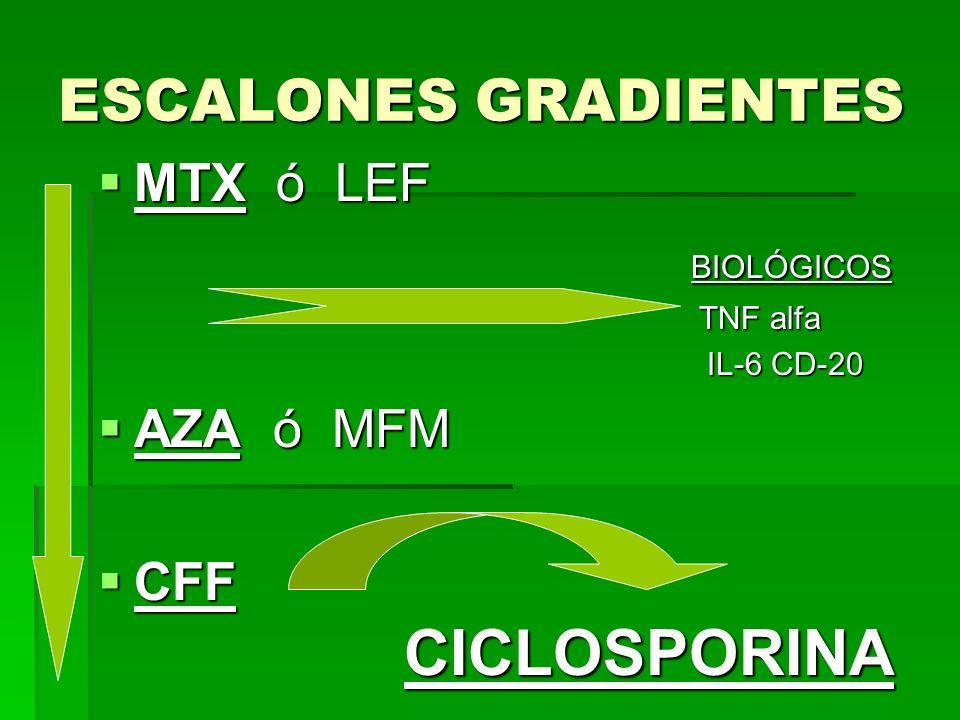 ESCALONES GRADIENTES MTX ó LEF BIOLÓGICOS AZA ó MFM CFF CICLOSPORINA