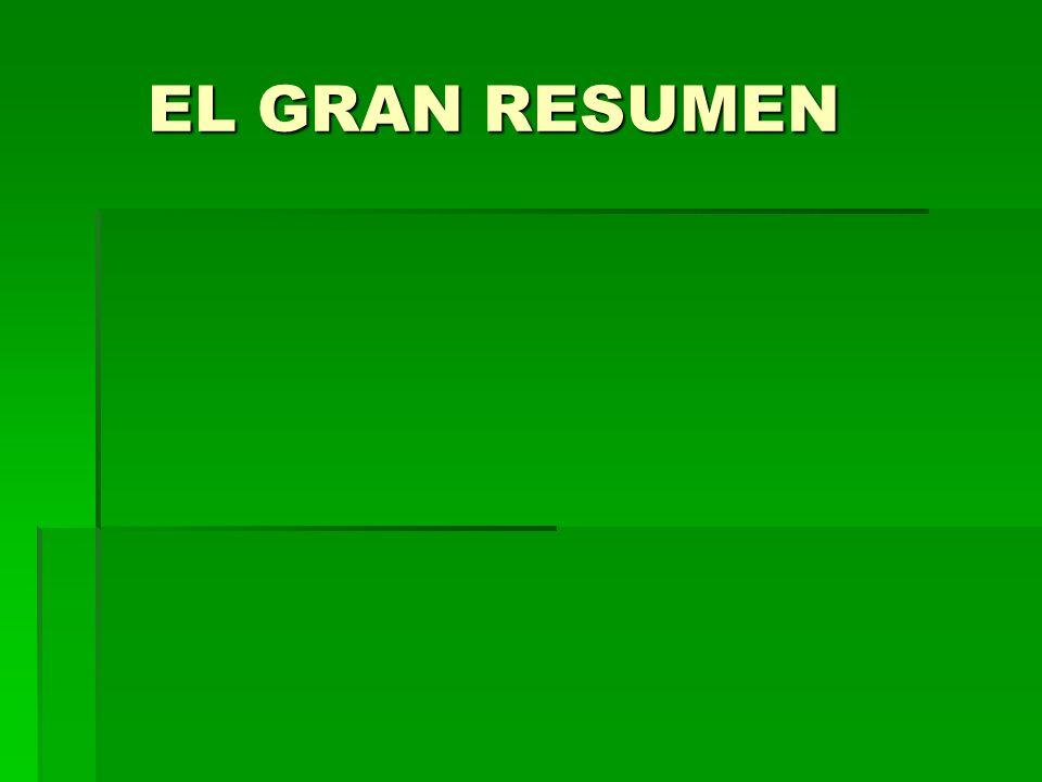 EL GRAN RESUMEN