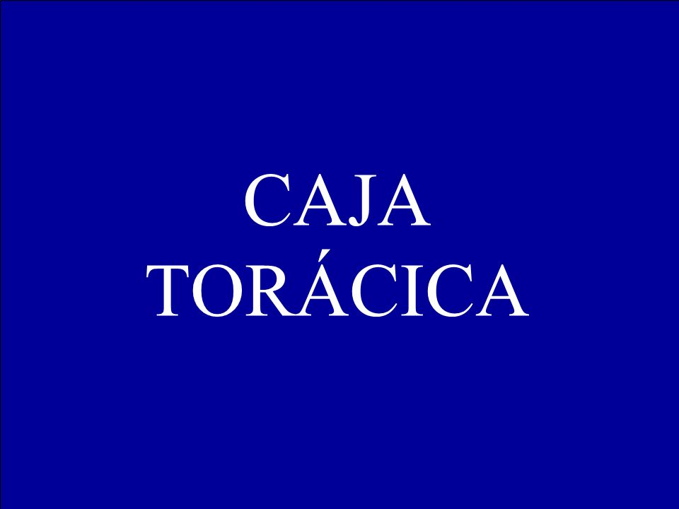 CAJA TORÁCICA