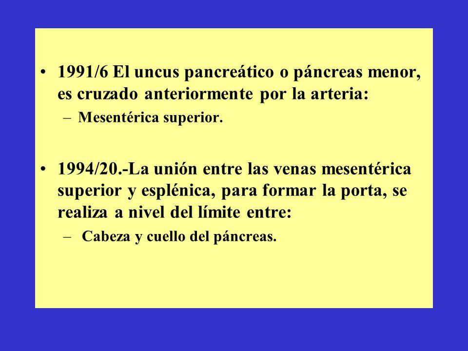 1991/6 El uncus pancreático o páncreas menor, es cruzado anteriormente por la arteria: