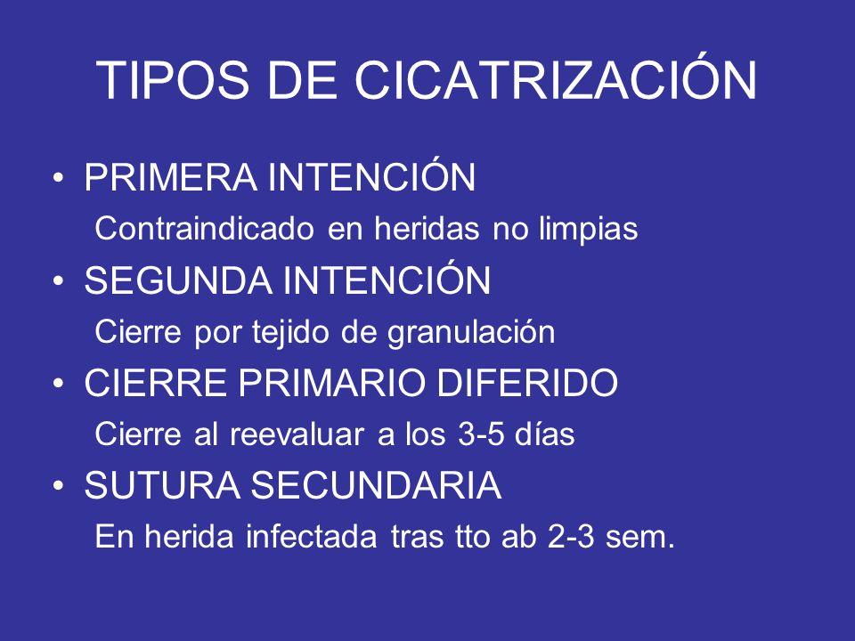 TIPOS DE CICATRIZACIÓN