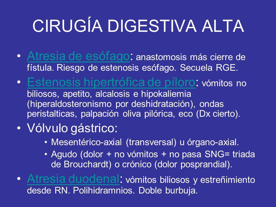 CIRUGÍA DIGESTIVA ALTA