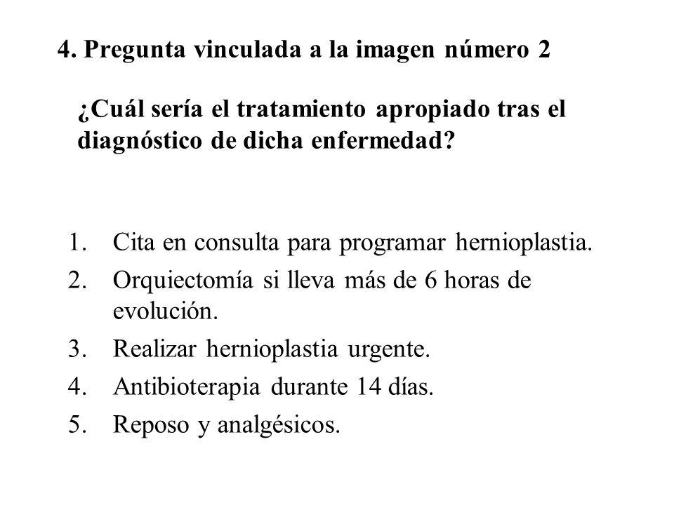 4. Pregunta vinculada a la imagen número 2