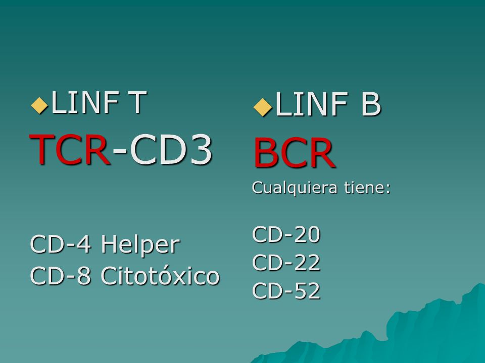 TCR-CD3 BCR LINF B LINF T CD-4 Helper CD-8 Citotóxico CD-20 CD-22