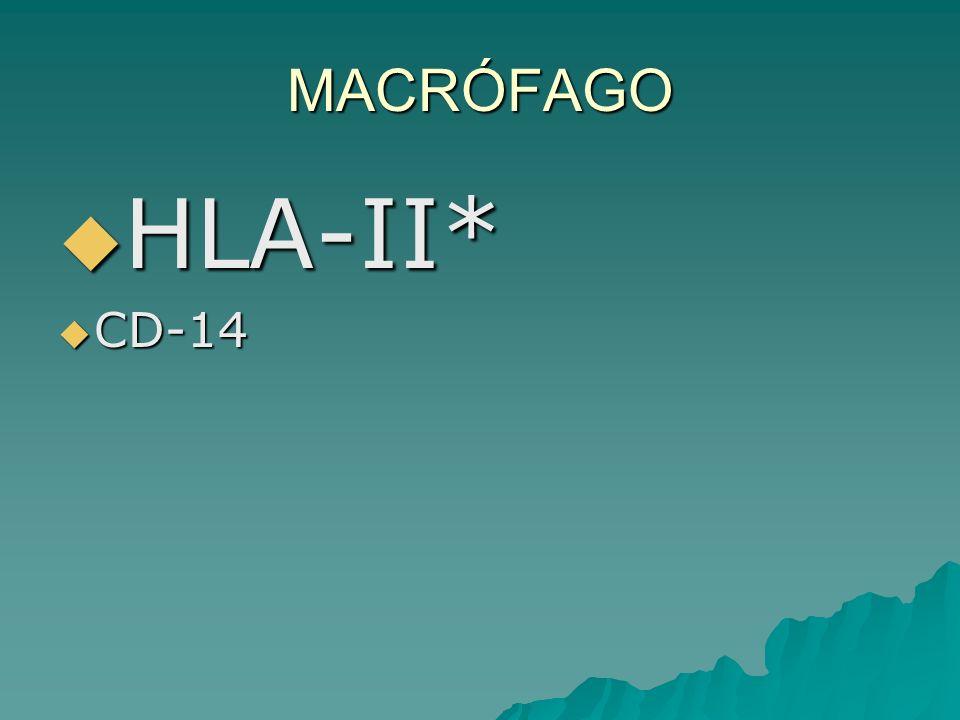 MACRÓFAGO HLA-II* CD-14