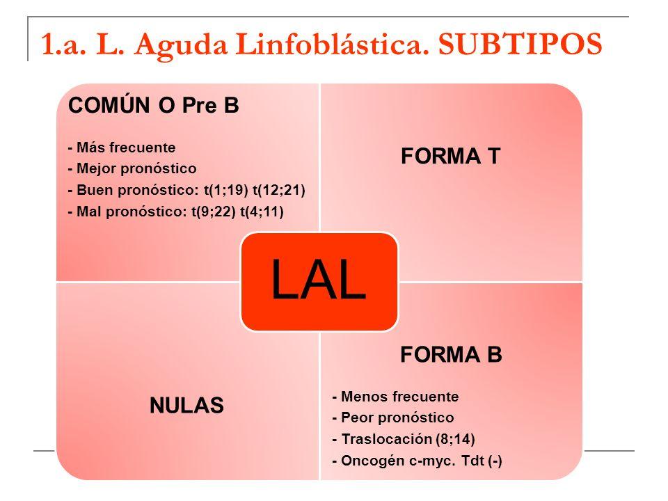 1.a. L. Aguda Linfoblástica. SUBTIPOS