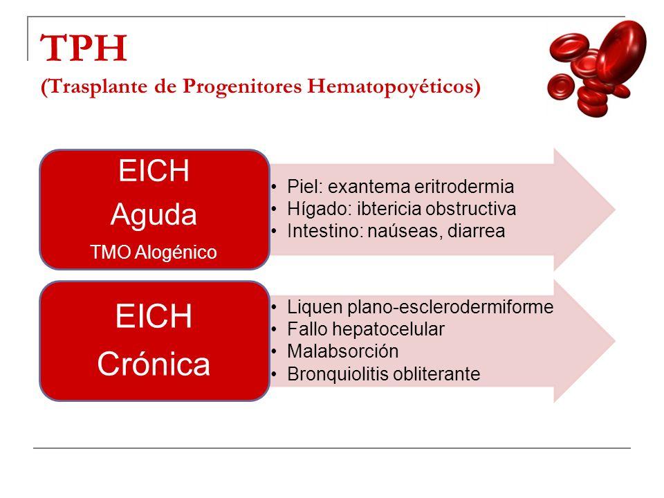 TPH (Trasplante de Progenitores Hematopoyéticos)