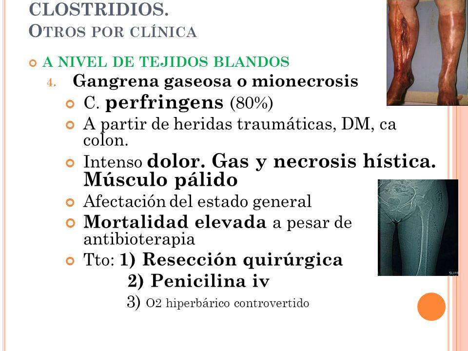 CLOSTRIDIOS. Otros por clínica