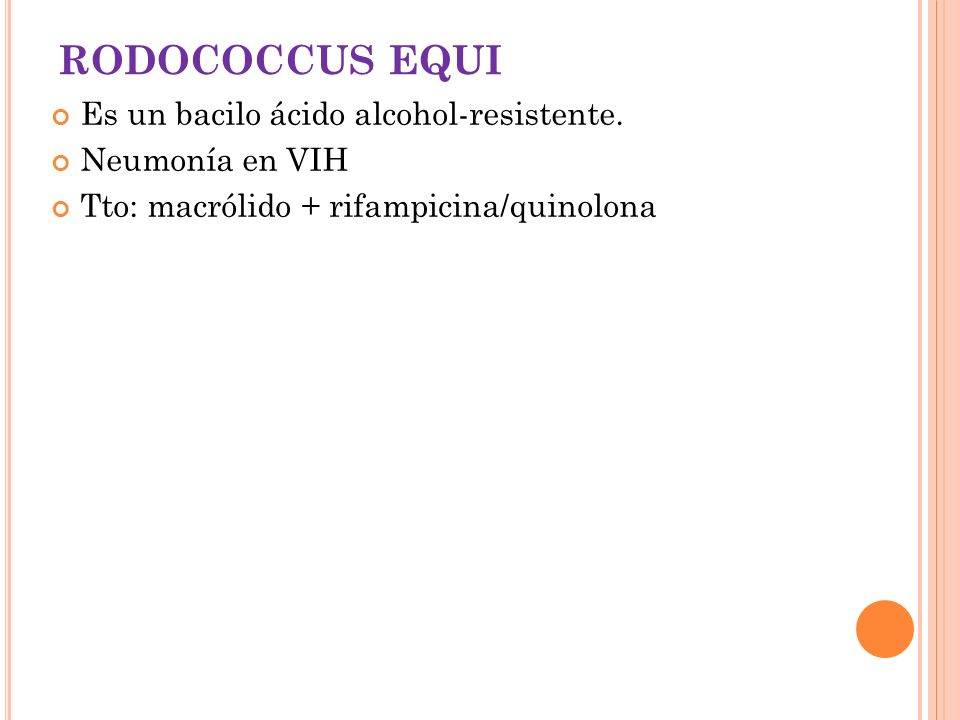 RODOCOCCUS EQUI Es un bacilo ácido alcohol-resistente. Neumonía en VIH
