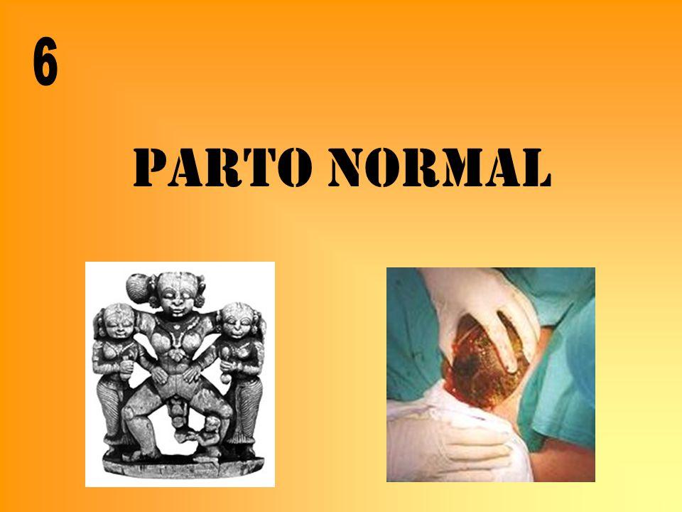 6 PARTO NORMAL