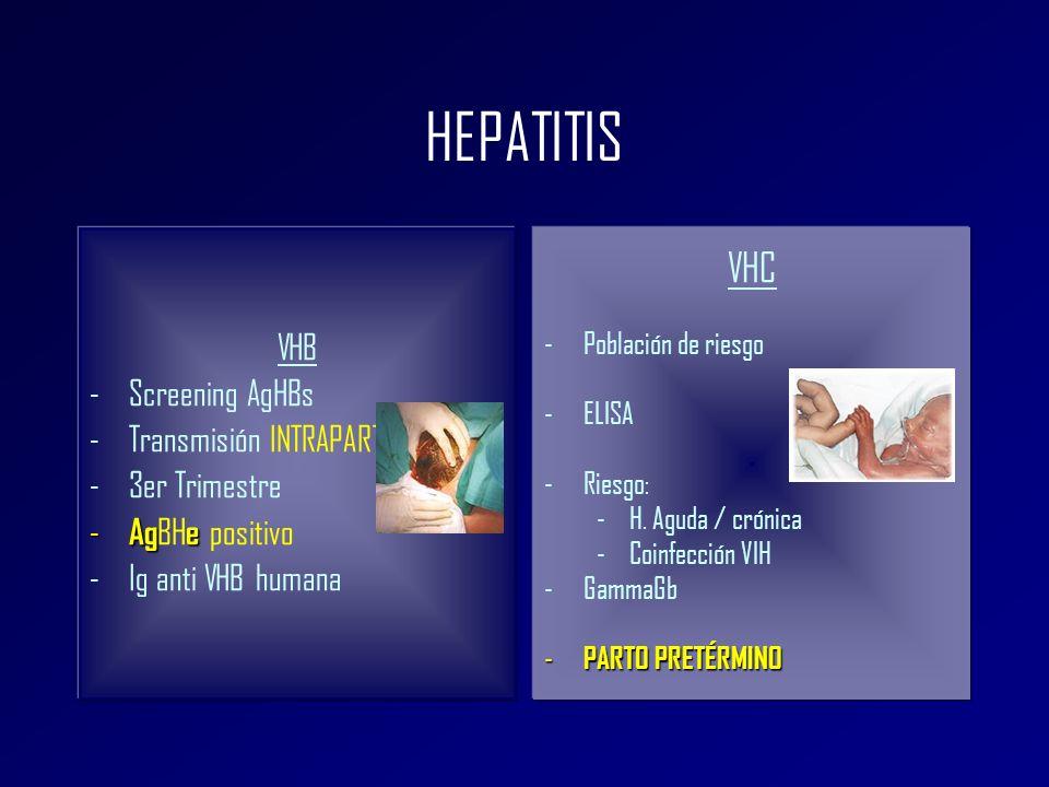 HEPATITIS VHC VHB Screening AgHBs Transmisión INTRAPARTO 3er Trimestre