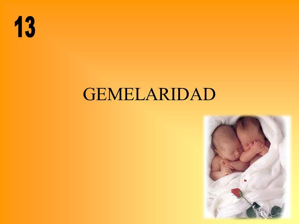 13 GEMELARIDAD