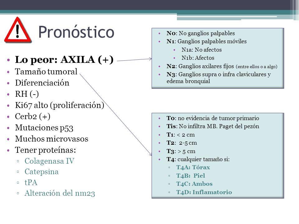 Pronóstico Lo peor: AXILA (+) Tamaño tumoral Diferenciación RH (-)
