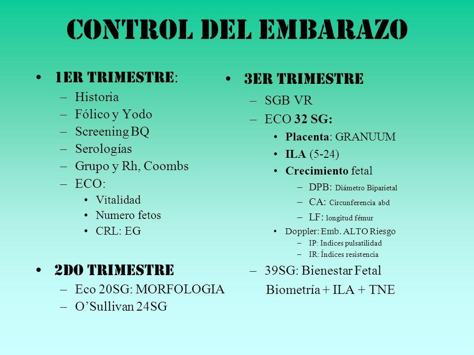 Control del embarazo 1er trimestre: 2do Trimestre 3er trimestre