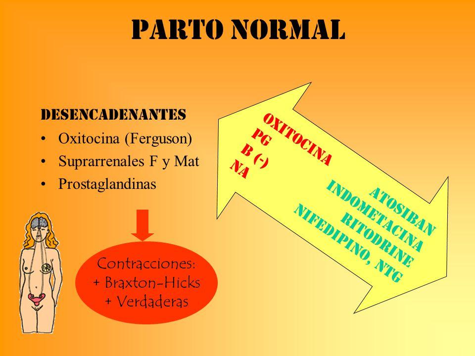 Parto normal Oxitocina Atosiban PG Indometacina B (-) Ritodrine