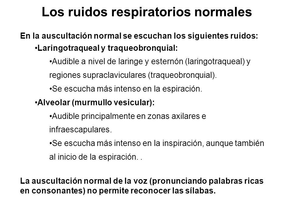 Los ruidos respiratorios normales