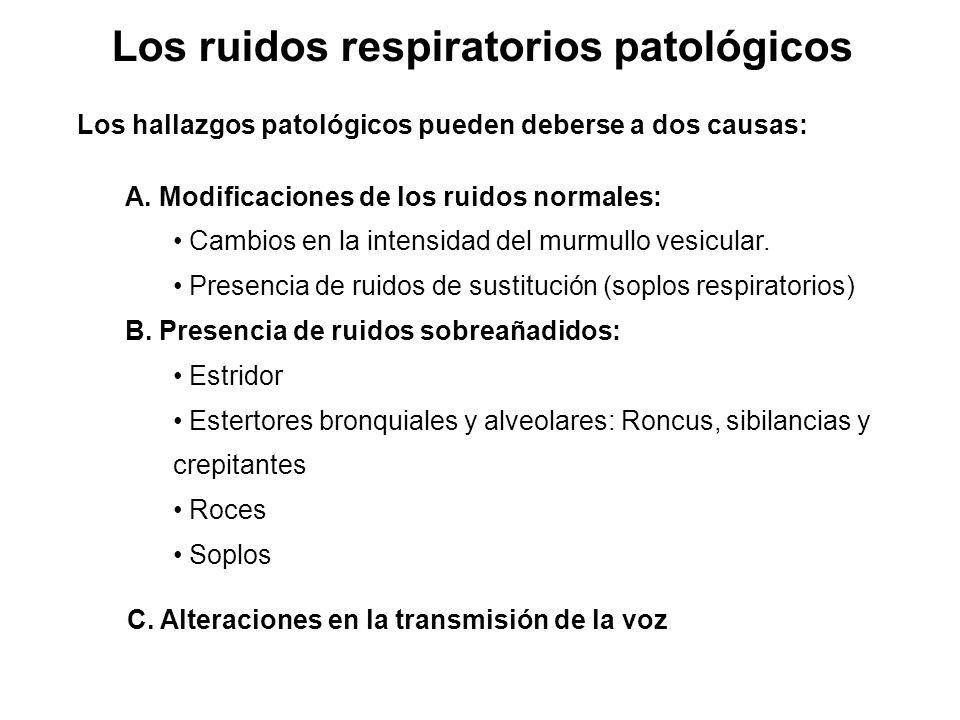 Los ruidos respiratorios patológicos