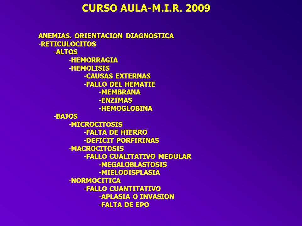 CURSO AULA-M.I.R. 2009 ANEMIAS. ORIENTACION DIAGNOSTICA RETICULOCITOS