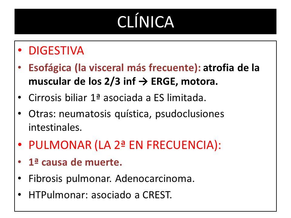 CLÍNICA DIGESTIVA PULMONAR (LA 2ª EN FRECUENCIA):