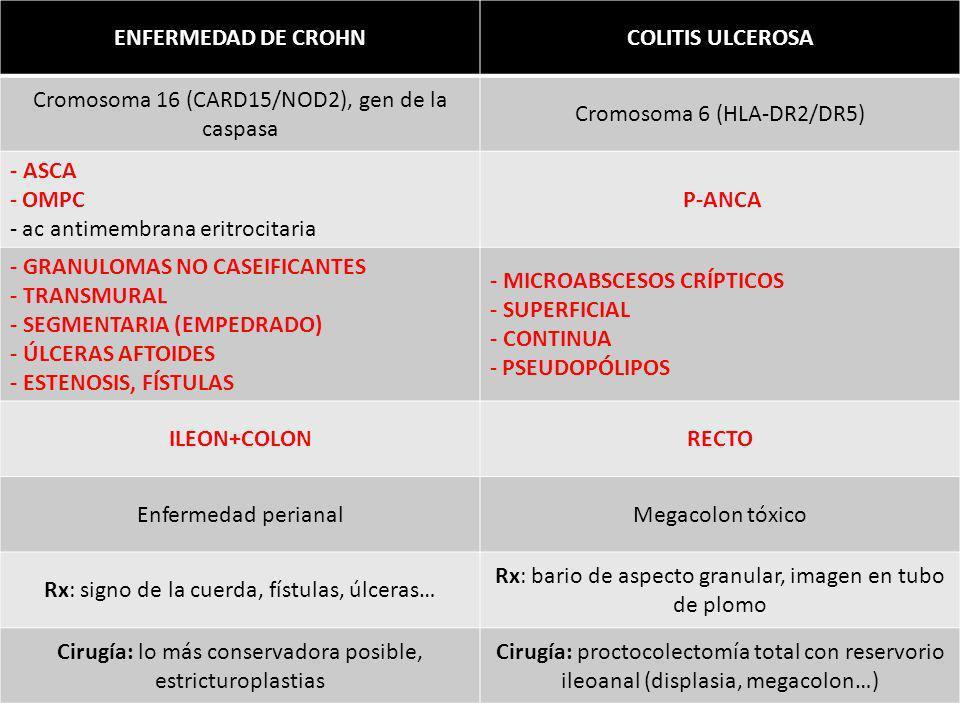 ENFERMEDAD DE CROHN COLITIS ULCEROSA P-ANCA ILEON+COLON RECTO