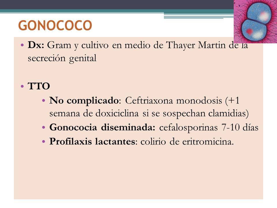 GONOCOCO Dx: Gram y cultivo en medio de Thayer Martin de la secreción genital. TTO.