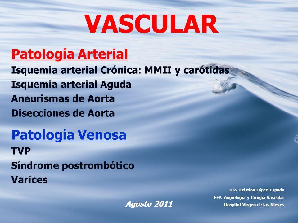 VASCULAR Patología Arterial Patología Venosa
