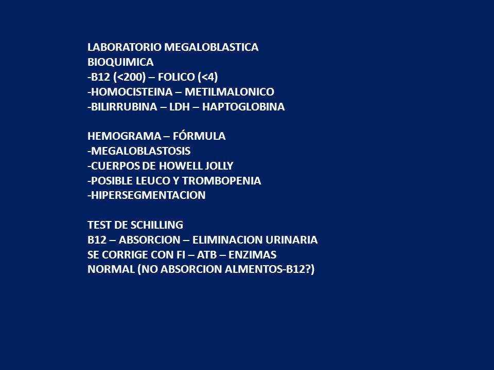LABORATORIO MEGALOBLASTICA