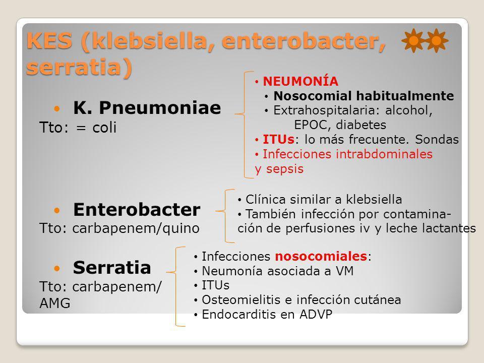 KES (klebsiella, enterobacter, serratia)