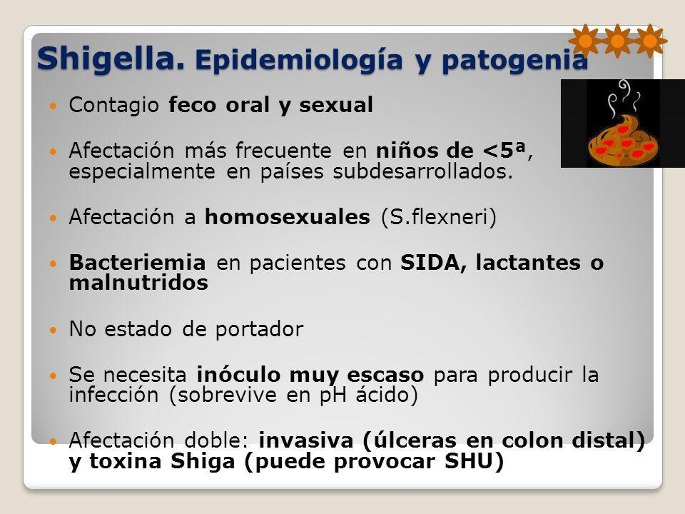 Shigella. Epidemiología y patogenia